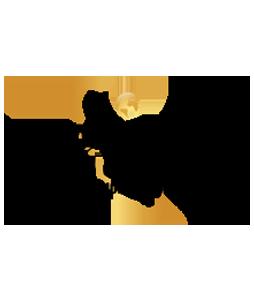 logo_cic.png
